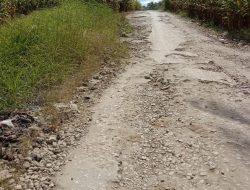 Jalan Desa Rusak Parah, Janji Bupati Perbaiki Aspal Hotmix belum Juga Terealisasi